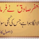 ask questions to gain knowledge - imam sadiq a.s