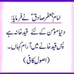Imama Jaffer e Sadiq (A.S) hadith about this world for momin