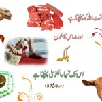 Falsafa e Qurbani from Quran in Sura e Hajj