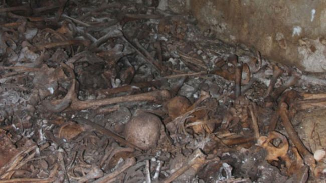 Mass graves from 1948 war discovered in Jaffa