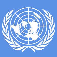 UN raps Saudis for harassing activists